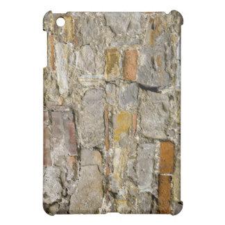 Grunge Wall  iPad Mini Cases
