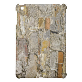 Grunge Wall  iPad Mini Cover