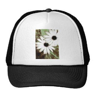 grungy daisys mesh hat