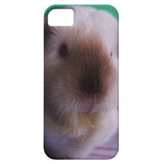 Grungy Guinea Pig iPhone Case