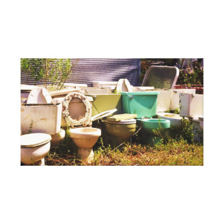 Grungy old Toilets in a Row Stretched Canvas Prints