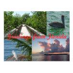 Grüße aus Florida Grußkarte Postkarte Postcard