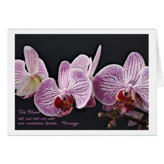 Grusskarte Orchidee Grußkarten