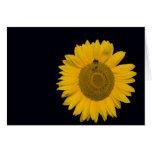 Grusskarte Sonnenblume Grußkarte