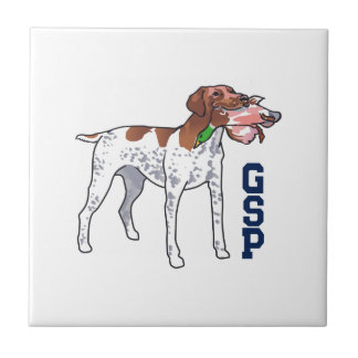 GSP SMALL SQUARE TILE