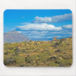 Guanaco Country, Patagonia Mouse Mat