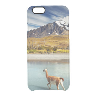 Guanaco crossing the river in Torres del Paine Clear iPhone 6/6S Case