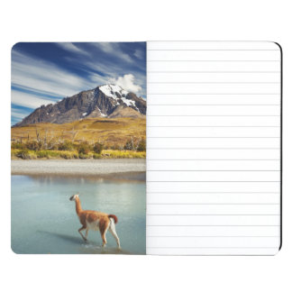 Guanaco crossing the river in Torres del Paine Journal