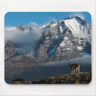 Guanaco in the Mountains | Chile Mouse Mat