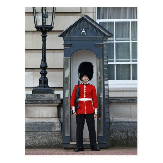Guardsman, Buckingham Palace Postcard