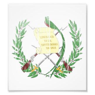 Guatemala Coat Of Arms Photo Art