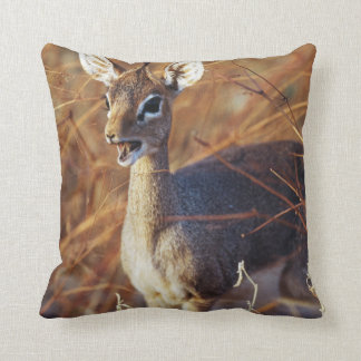 Guenther's dik-dik standing cushion