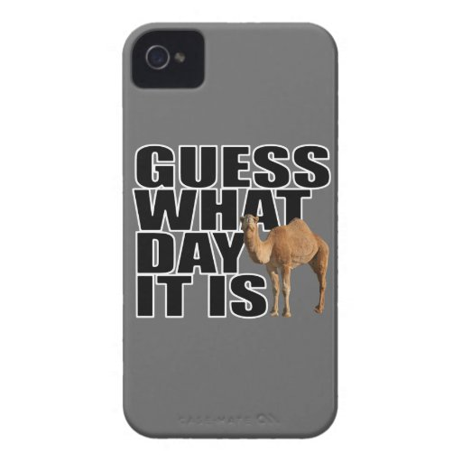 Guess What Day It Is Hump Day Camel iPhone 4 Case-Mate Cases