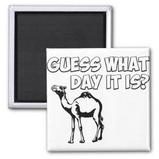 Guess What Day it Is? Hump Day Camel Square Magnet