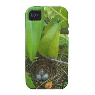 Guess which bird's eggs? Nest 1 Vibe iPhone 4 Cover