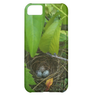 Guess which bird's eggs? Nest 1 iPhone 5C Case
