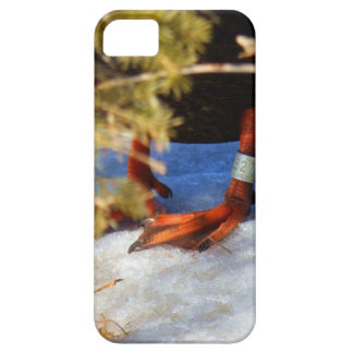 Guess Who? iPhone 5 Covers