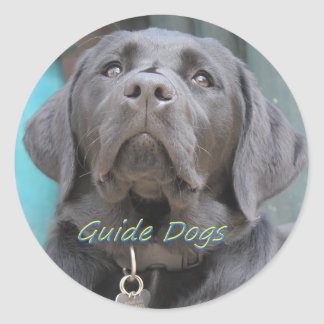 Guide Dogs - Black Lab Cross Round Sticker