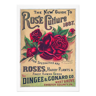 Guide to Rose Culture Personalized Announcements