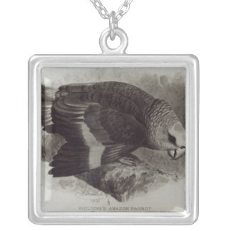 Guilding's Amazon Parrot Silver Plated Necklace