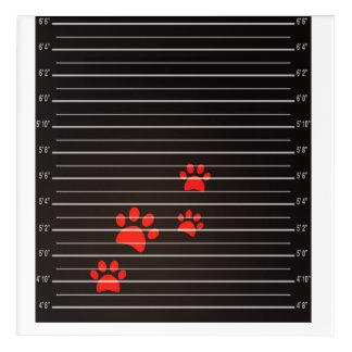 Guilty Cats Acrylic Wall Art