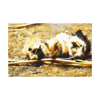 Guine Pigs Feasting Canvas Prints