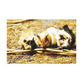 Guine Pigs Feasting Canvas Print