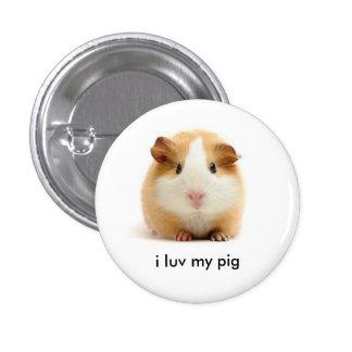 guinea pig 3 cm round badge