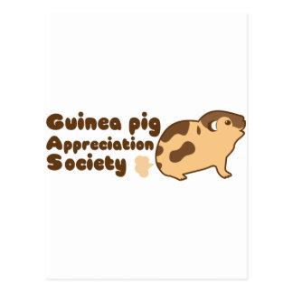 Guinea pig appreciation society GAS Postcard