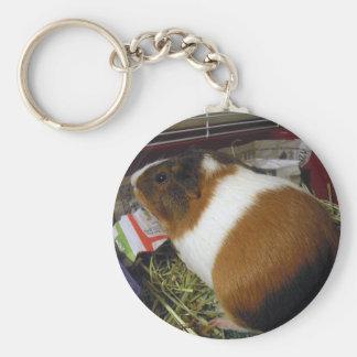 Guinea Pig Basic Round Button Key Ring
