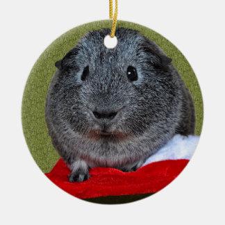 Guinea Pig Christmas Christmas Ornament