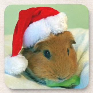 Guinea pig Christmas coasters