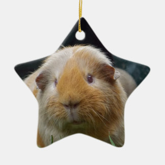 Guinea pig christmas ornament