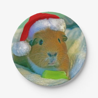 guinea pig Christmas plate 7 Inch Paper Plate