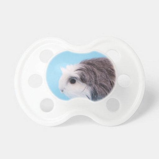 guinea pig baby pacifiers
