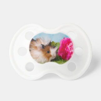 guinea pig baby pacifier