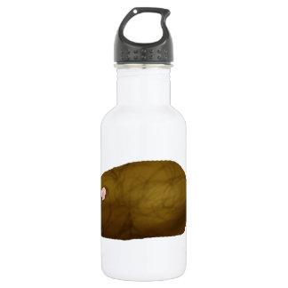 Guinea Pig Geoff 532 Ml Water Bottle