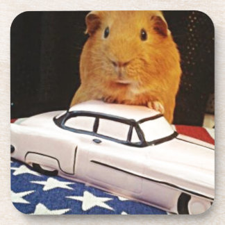 Guinea Pig Gifts Coaster