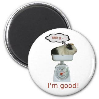 Guinea Pig Health Magnet