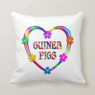 Guinea Pig Heart Cushion