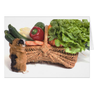 guinea pig in a basket card