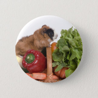 guinea pig in a basket of vegetables 6 cm round badge