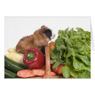 guinea pig in a basket of vegetables card