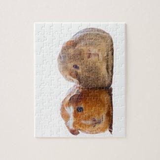 Guinea Pig Jigsaw Puzzle