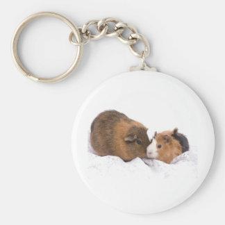 guinea pig key ring