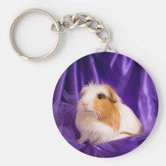 guinea pig keychains