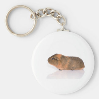 guinea pig key chains