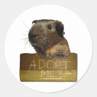 Guinea Pig Rescue Adoption Classic Round Sticker