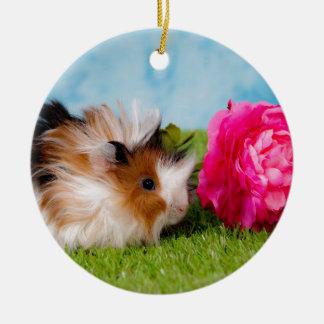 guinea pig round ceramic decoration