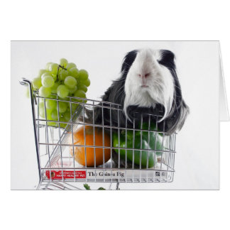 Guinea pig shopping spree greeting card